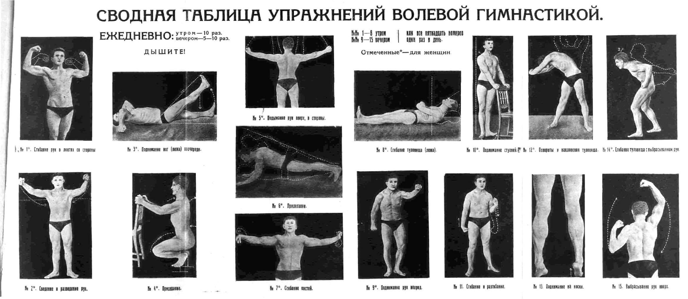 Волевая Гимнастика Анохина книга